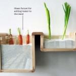 Conserver ses aliments sans réfrigérateur