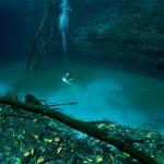 Cenote Angelita : une rivière sous-marine
