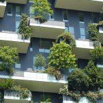 Pourquoi est-il important de végétaliser la ville ?